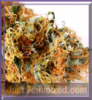 Jack Lights Mix & Match Just Feminized Seeds